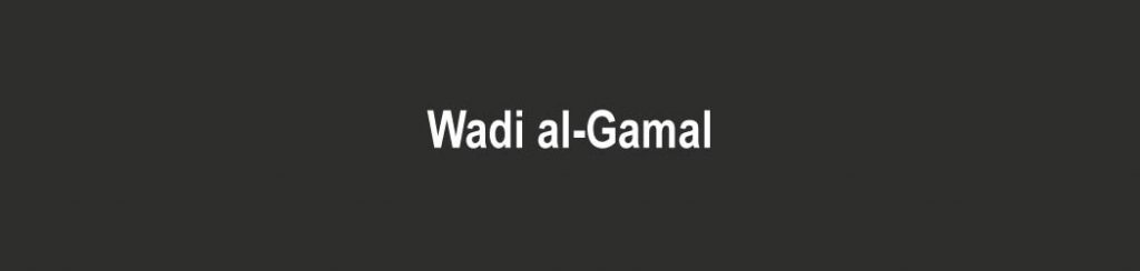 Ägypten: Wadi al Gamal
