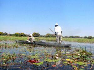 Prophylaxe für Malaria-Risiko in Botswana
