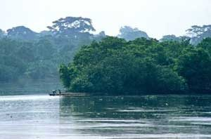 Lebensader in Westafrika - der Fluss Kongo