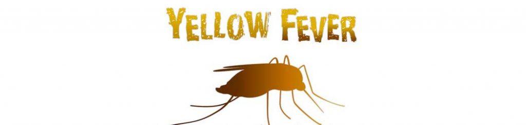 Gelbfieberkrankheit in Afrika