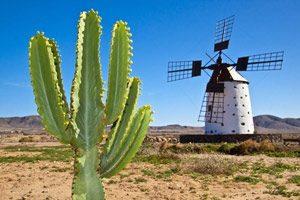 Typisch Fuerteventura - Windmühle