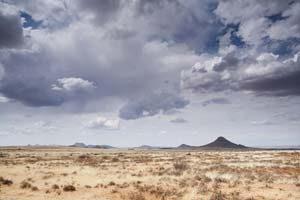Die faszinierende Karoo Halbwüste