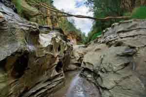 Canyon im Hells Gate Nationalpark in Kenia