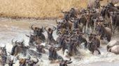 Kenia: Der Fluss Mara