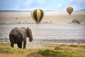 Kenia: Ballonsafari in der Masai Mara