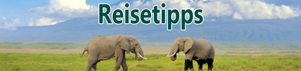 Kenia: Reisetipps für Urlaub und Safari