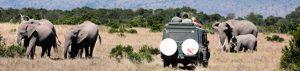 Kenia-Rundreise vor Ort buchen