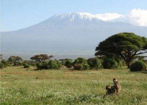 Kombinierte Rundreise durch Kenia und Tansania rund um den Kilimandscharo