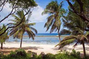 Wunderschöner Sandstrand am Tiwi Beach - Kenia-Urlaub an der Südküste