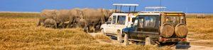 Kenia: Tsavo Nationalpark