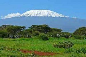 Kilimandscharo- höchster Berg in Afrika