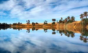 Schöne Oasen in der Libyschen Wüste