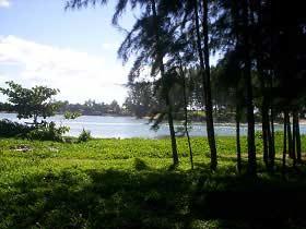 Madagaskar: Herrlich saftiges Grün und Wasser