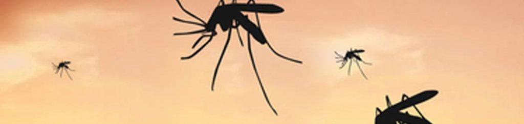 Malaria in Afrika