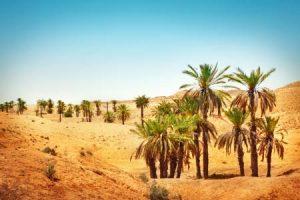 Abwechslungsreiches Klima in Marokko