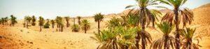 Marokko: Klima und Wetter