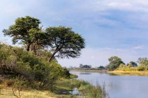 Namibia: im Nambwa-Nationalpark im Caprivi-Zipfel