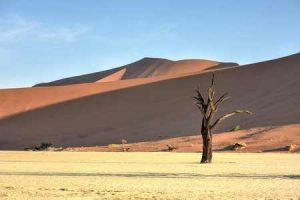 Namibia: trockenes Land