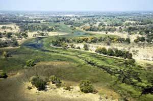 Das wunderschöne Okavangodelta von oben