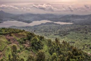 Ruanda: Safaris finden meist im Hügelland statt