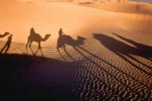 Die Sahara im Norden von Afrika ist die größte Wüste der Welt