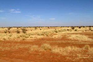 Die Sahelzone südlich der Sahara