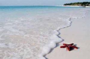 Traumhafte Strände auf der Insel Sansibar