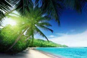 Traumhafte Insel Mahe mit herrlichen Sandstränden unter Palmen