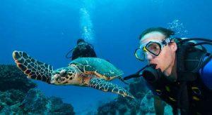 Seychellen: Unterwasserparadies für erlebnisreiches Tauchen