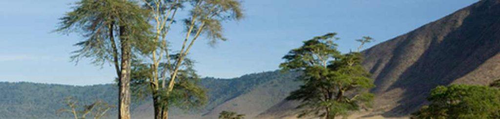 Tansania: Das Schutzgebiet am Ngorongoro