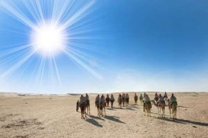Wüstenausflug in die Sahara auf einem Kamel